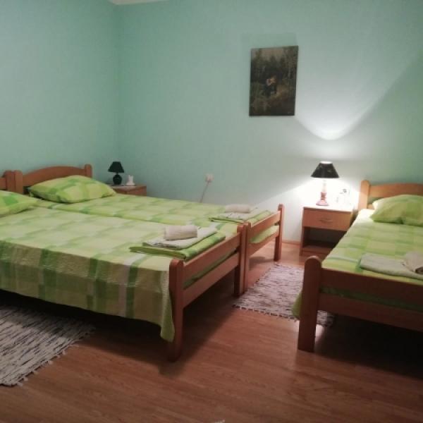 Vila Goran apartman 1
